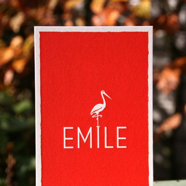 Emile ooiveaar koraalrood babyborrel klein_kaartje_dubbelzijdig.ue_