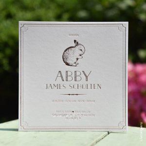 Letterpers-Letterpers-geboortekaart-DSC_1179-bewerkt-Abby