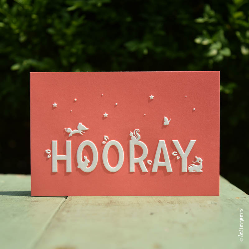 Letterpers-Letterpers-geboortekaart-DSC_1329 koraal hooray