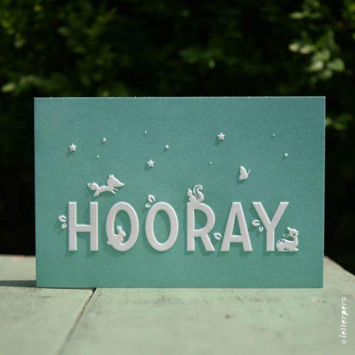 Letterpers-Letterpers-geboortekaart-DSC_1330 hooray groen
