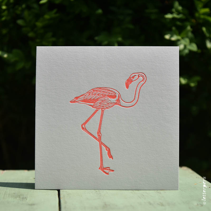 Letterpers-Letterpers-geboortekaart-DSC_1341 flamingo