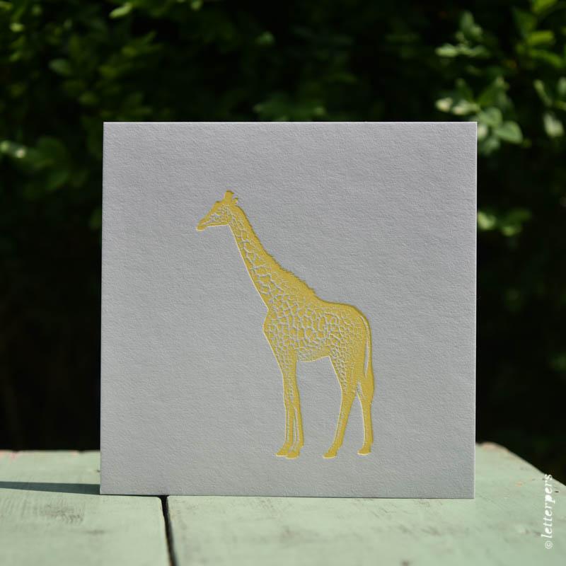 Letterpers-Letterpers-geboortekaart-DSC_1342 giraffe