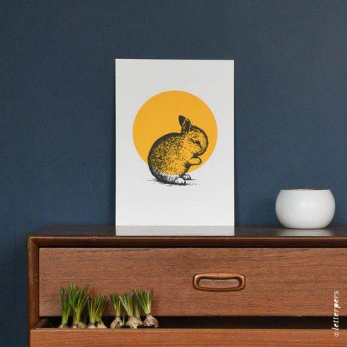 Letterpers-Letterpers-geboortekaart-DSC_7866-poster-konijn