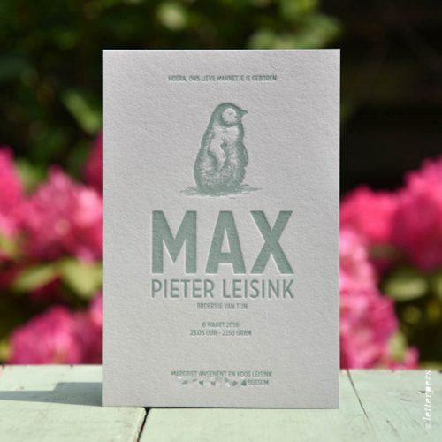 Letterpers-Letterpers-geboortekaart-Letterpers-Letterpers-geboortekaart-Max-pinguin-DSC-1077-bewerkt-ue
