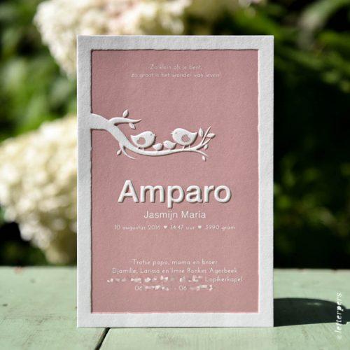 letterpers-letterpers-geboortekaart-dsc_4079-bewerkt_amparo