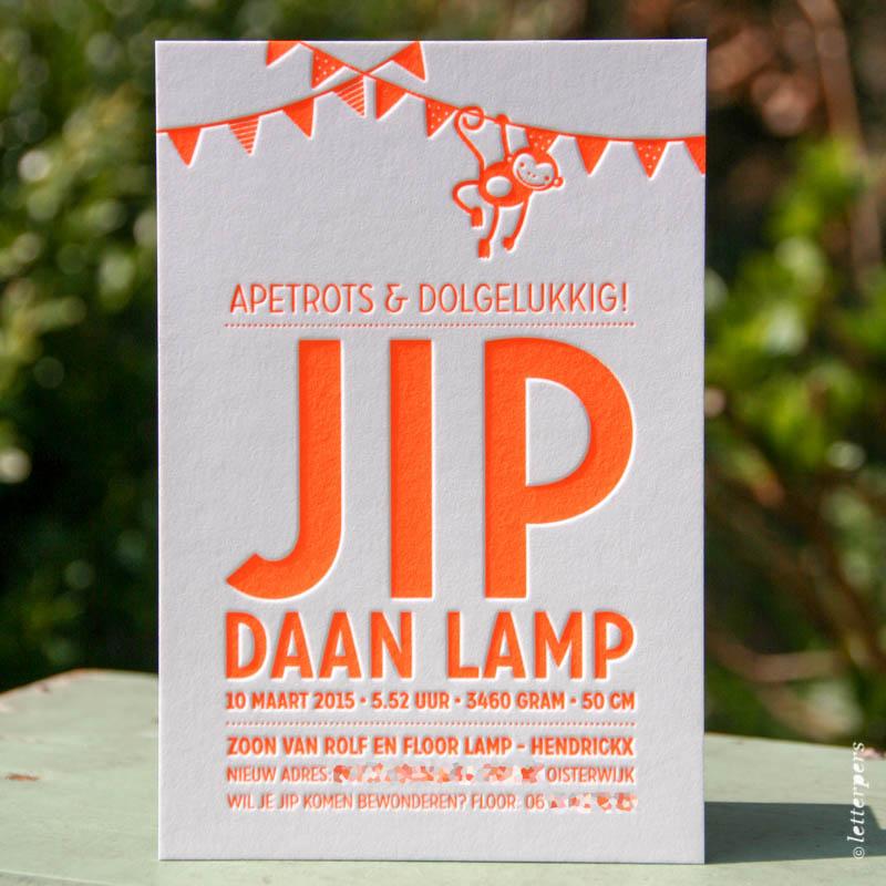 Letterpers-Letterpers-geboortekaart-IMG_5484-bewerkt_Jip_aap