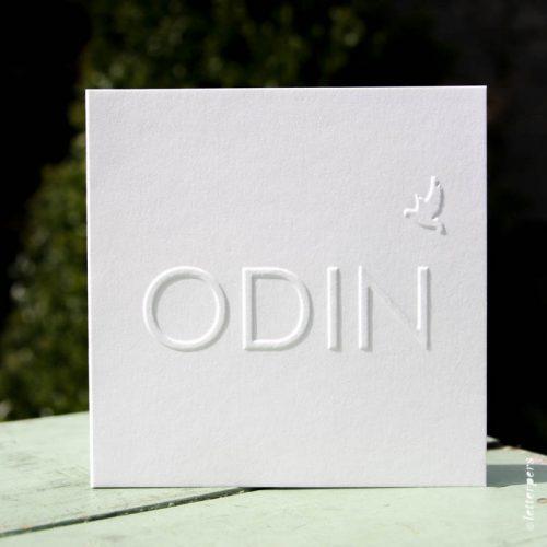 Letterpers-Letterpers-geboortekaart-IMG_5744_Odin