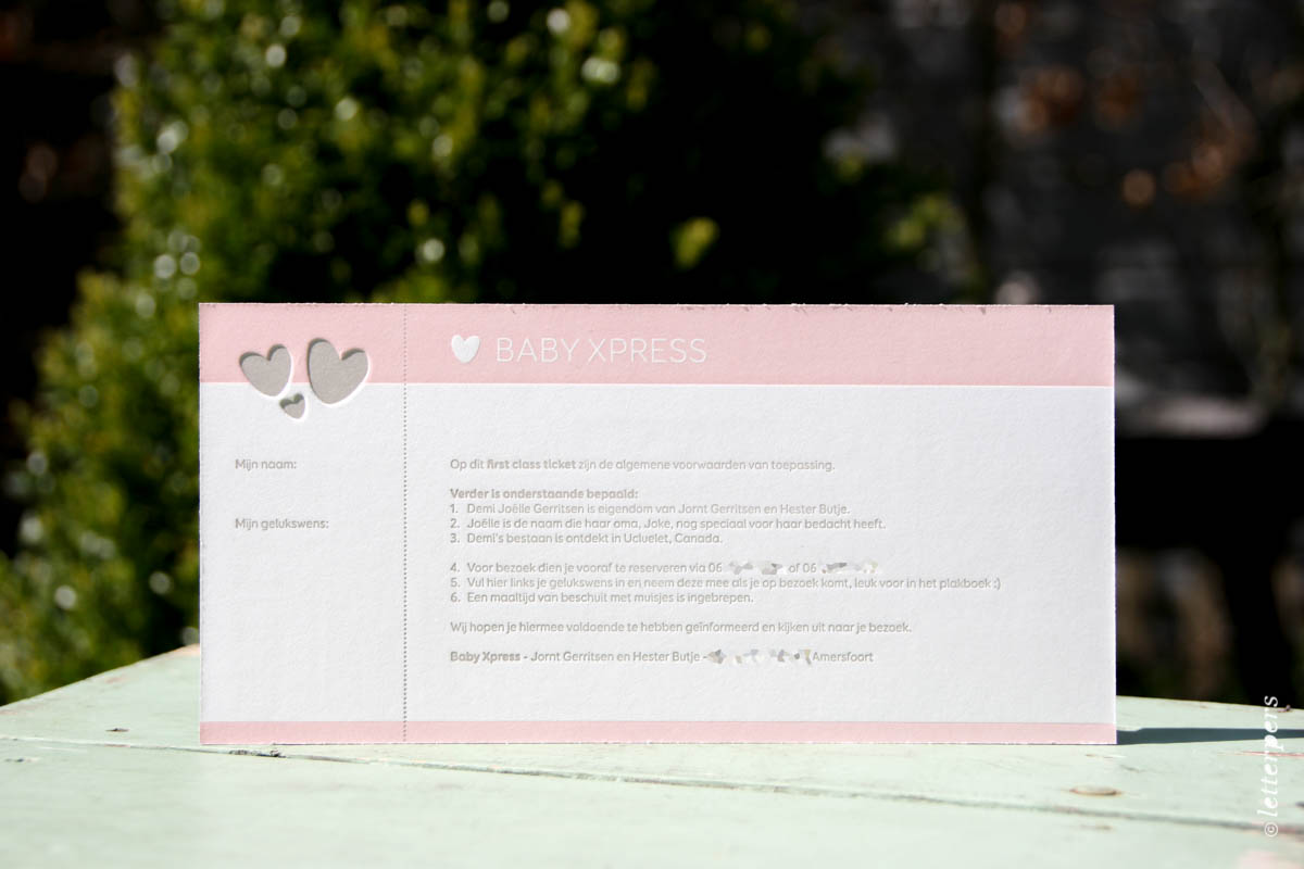Letterpers-Letterpers-geboortekaart-IMG_5869-bewerkt_Demi