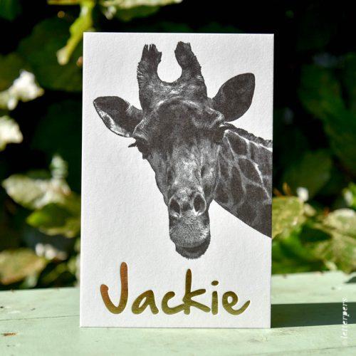 letterpers-letterpers-geboortekaart-dsc_5107_jackie