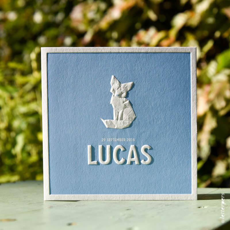letterpers-letterpers-geboortekaart-dsc_5217_lucas_3d_vos