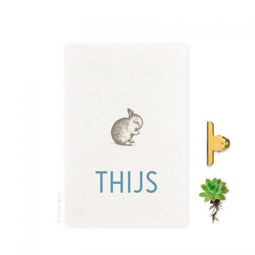Geboortekaartje folie jongen konijn letterpers letterpress