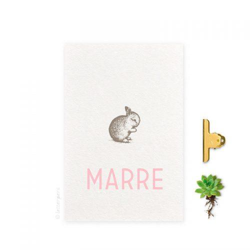 Geboortekaartje folie meisje konijn letterpers letterpress