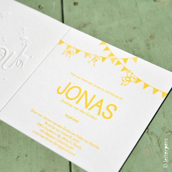 Letterpers-Letterpress-geboortekaart-DSC_3354-jonas-aap-slinger