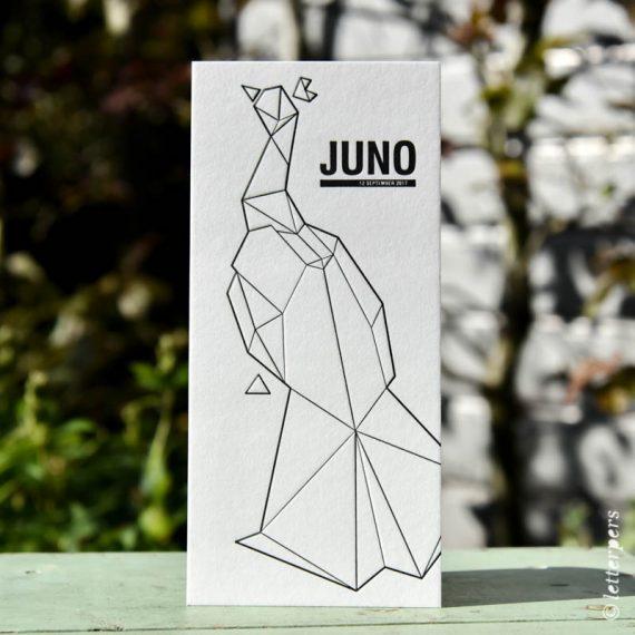 Letterpers-Letterpress-geboortekaart-DSC_4085_Juno
