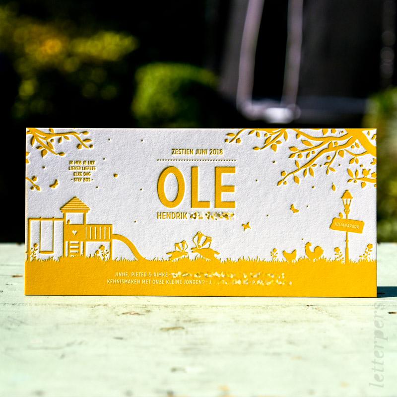 Zomers op het kaartje van Ole
