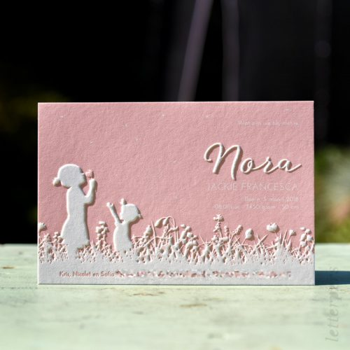 geboortekaartje-nora-zusje-preeg-roze