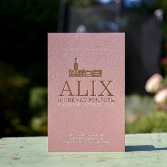 Utrecht skyline stad folie met roze geboortekaart dochter meisje