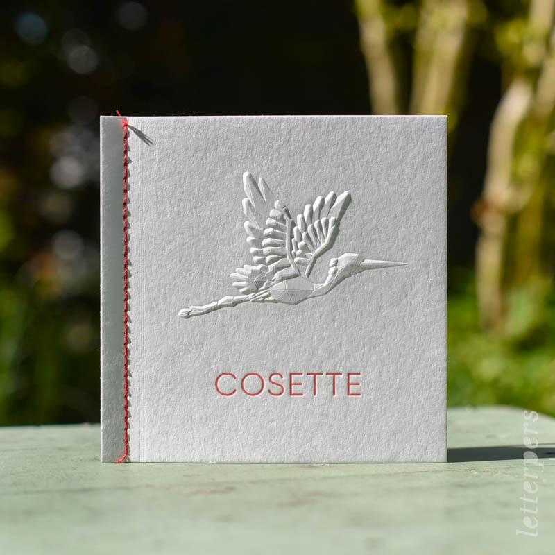geboorte kaartje meisje letterpress cosette 3d ooievaar touwtje