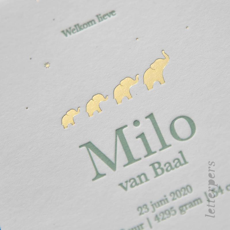 Geboortekaartje voor Milo met olifantjes