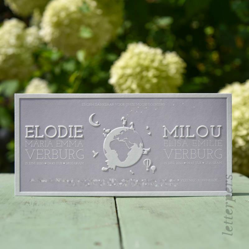Een geboortekaartje voor een tweeling Elodie en Milou