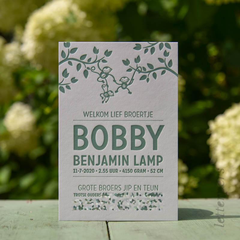 Een geboortekaartje voor jongen, broertje Bobby