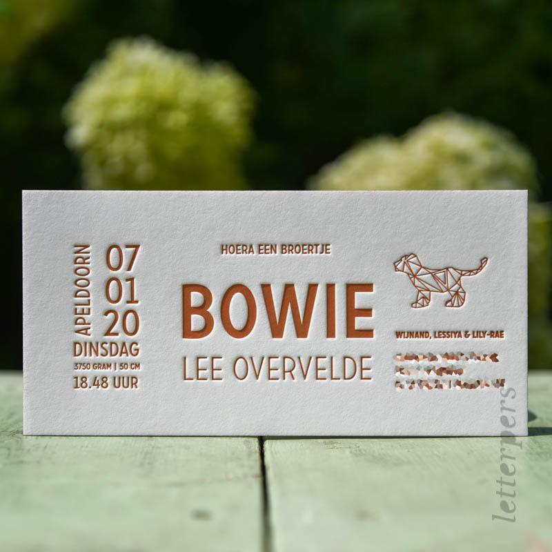 Geboortekaartje voor broertje Bowie, met een geometrisch hondje