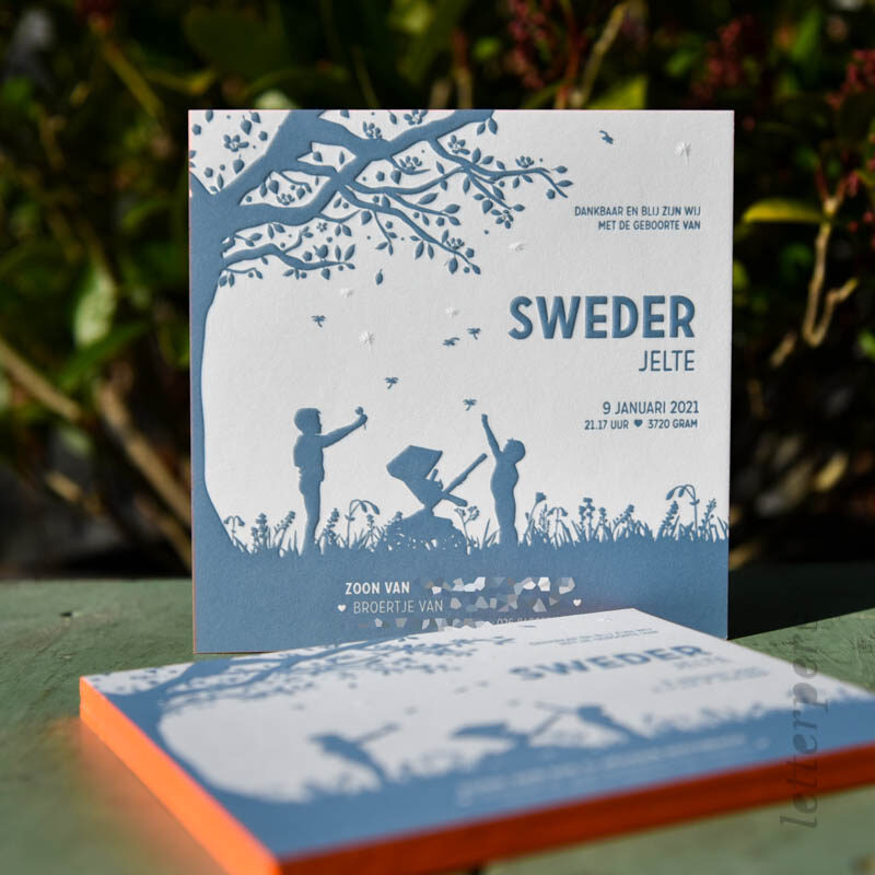 geboortekaartje sweder met broers